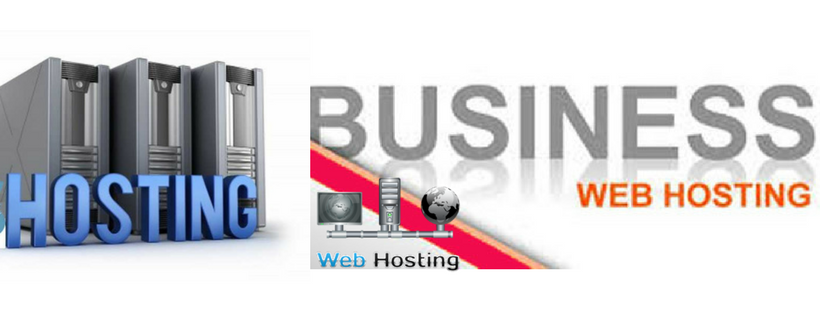ideal web hosting plan for business purposes